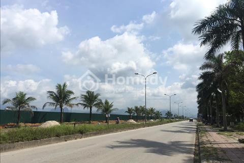 Bán đất biệt thự 375m2 khu đô thị Cao Xanh - Hà Khánh A