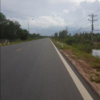 Đất nền biệt thự khu sầm uất Phú Đông Nhơn Trạch