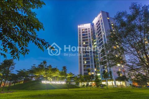 Phòng kinh doanh chủ đầu tư Hồng Hà, Tứ Hiệp Dầu Khí cập nhật chính sách bán hàng mới nhất