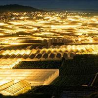Cơn sốt đất nền Đà Lạt, giá chỉ từ 8 triệu/m2, sổ đỏ trao tay, vị trí độc tôn số 1 Đà Lạt