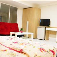 Căn hộ giá rẻ, mới xây, full nội thất ngay Trương Công Định, Tân Bình