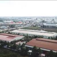 Mở bán dự án Phong Phú, xã Phong Phú 4, chỉ 750 triệu/nền