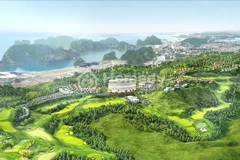 Giá chủ đầu tư chiết khấu 15 triệu/m2 nhận ngay khu biệt thự đồi Vịnh Hạ Long