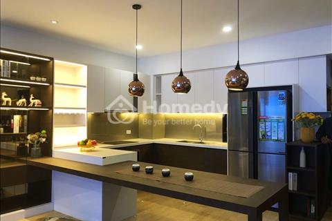 Bán gấp căn hộ 3 phòng ngủ tại chung cư Amber Riverside 622 Minh Khai cạnh Times City, tặng xe SH