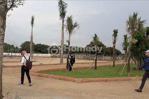 Đất MT Trần Văn Chẩm TP. Hồ Chí Minh chỉ có 11tr/m2, SHR từng nền, xây dựng tự do