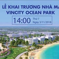 Đặt chỗ những căn đẹp, giá tốt nhất từ chủ đầu từ dự án Vincity Ocean Park