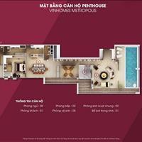 Thỏa sức lựa chọn căn đẹp tầng đẹp, nội thất cao cấp chìa khóa trao tay Vinhomes Metropolis