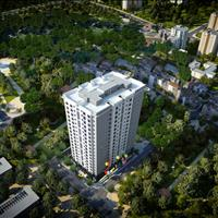 Nhận nhà đón xuân cùng Trương Định Complex chỉ với 2,3 tỷ, căn 3 phòng ngủ, đủ nội thất