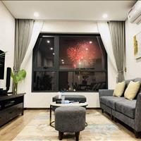 Cho thuê căn hộ full nội thất đường Hoàng Sa, quận 1