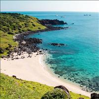 Khu biệt thự nghỉ dưỡng nằm ngay vị trí vàng view biển 100% giá thì rất thơm cho nhà đầu tư