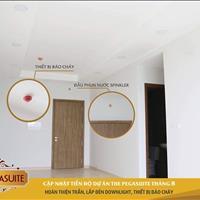 Cần bán căn hộ The PegaSuite Quận 8, 60m2, tầng cao, giá chỉ 1,78 tỷ, bao hết VAT