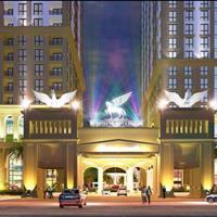 Bán căn hộ 1 phòng ngủ, dự án cạnh Times City, diện tích 48m2