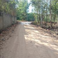 3,6ha Tân An, Vĩnh Cửu gần khu công nghiệp Sông Mây chỉ 220 triệu/sào