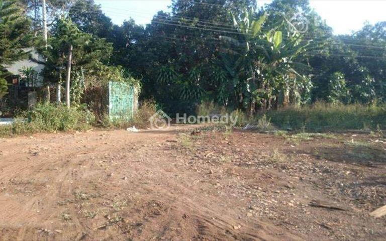 Cho thuê đất và nhà xưởng thuộc khu công nghiệp Long Khánh, Đồng Nai
