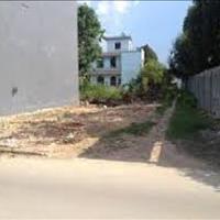 Hót hòn họt, đất thổ cư SHR 82m2, 590 triệu ở Huỳnh Hữu Trí khu dân cư sầm uất, không ngập