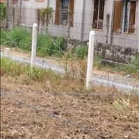 Cơ hội đầu tư vài lô ngay mặt tiền đường Bùi Thị Điệt, Củ Chi lợi nhuận lên đến 100 triệu/tháng SHR