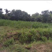Bán đất nền chính chủ 10x20m, 5x20m tại khu công nghiệp Trảng Bàng, nền thổ cư hết đất