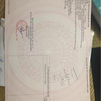 Bán nhanh lô đất chính chủ phường Bắc Lý khu nhà ở Trường Thịnh A giá chỉ 1,05 tỷ