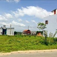 Bán gấp lô đất 8x20m đường Trần Đại Nghĩa, Bình Chánh, gần bệnh viện Nhi Đồng 3, giá 1,4 tỷ