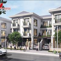 Dự án Golden Star Riverside - Thời cơ phát triển kinh tế, đầu tư bất động sản Đức Hoà, Long An