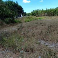 Sang lại gấp lô đất thổ vườn mặt tiền sông Nhơn Trạch kề quận 2, sổ hồng riêng, giá rẻ 970 triệu