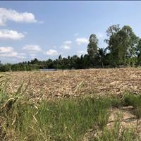 Cần tiền trả nợ bán gấp lô đất thổ vườn mặt tiền sông Phú Đông Nhơn Trạch, giá rẻ 820 triệu