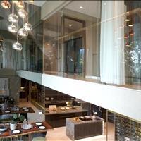 Mở bán Duplex Phú Mỹ Hưng - chủ đầu tư Singapore bàn giao quý 4/2021