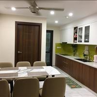 Bán căn hộ full nội thất cực đẹp và hiện đại tầng 3 T3 CT15 Green Park Việt Hưng, Long Biên