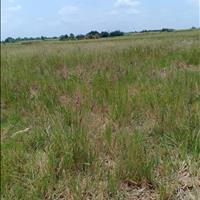 Hạ giá bán gấp đất nhà vườn Phước Khánh Nhơn Trạch, giá 410 triệu/1000m2, cam kết lợi nhuận cao