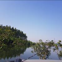 Siêu sốc chính chủ bán đất đập Hồ Đồng Đò, Sóc Sơn, 8000m2 và 3ha đất rừng, giá cực rẻ 12 tỷ