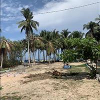 Bán đất mặt tiền đường biển Nguyễn Du, La Gi, sổ hồng từng nền