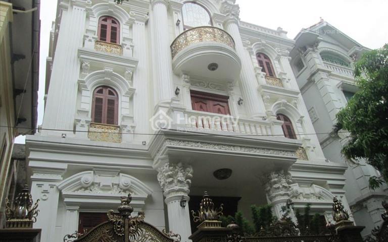 Biệt thự mặt phố Nguyễn Khuyến sầm uất 222m2 chỉ 27.9 tỷ