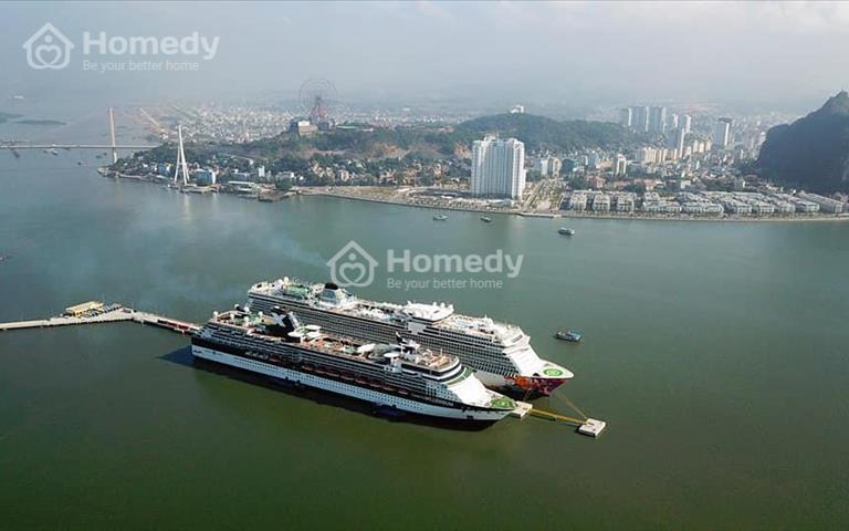 Cho thuê căn hộ 1 phòng ngủ full nội thất chung cư The Sapphire Hạ Long, Quảng Ninh, 9 triệu//tháng