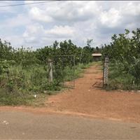 Đất 400m2 sổ hồng riêng nằm liền kề đường Trảng Bom - Xuân Lộc
