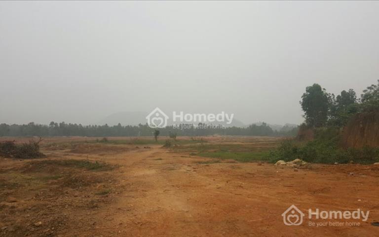 Bán đất sản xuất công nghiệp 31 hecta Bình Xuyên, Vĩnh Phúc