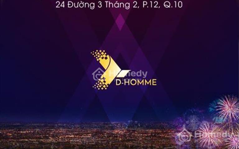 Căn hộ D - Homme cao 30 tầng biểu tượng mới của trung tâm Chợ Lớn quận 6