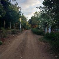 Đất xã Thanh Bình, Trảng Bom 1000m2, chỉ 350 triệu