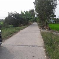Chính chủ bán gấp miếng đất ở Tiền Giang, 2 mặt tiền đường nhựa, sầu riêng ăn trái, 8000m2, 7,2 tỷ