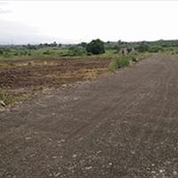 Cần bán lô đất mẫu huyện Châu Đức, Bà Rịa Vũng Tàu, 310 triệu/1000m2