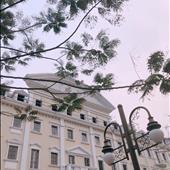 Nguyễn Kiều Anh
