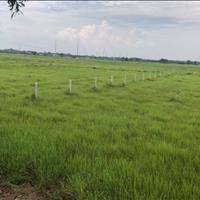 Bán đất vườn Tỉnh lộ 15 xã Trung An, Củ Chi, diện tích 600m2, giá 1,5 tỷ