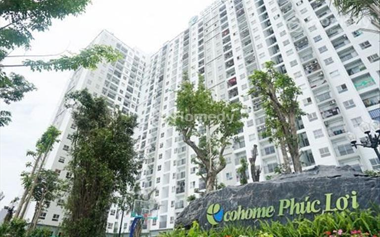 Gia đình cần cho thuê căn hộ chung cư Ecohome Phúc Lợi, 55m2 full nội thất giá 5.5 triệu/tháng