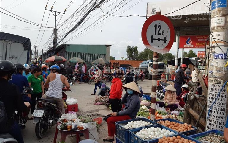 Bán đất ngay cụm khu công nghiệp Tân Đô, Tân Đức, Hải Sơn, 239m2 - giá 3,1 tỷ