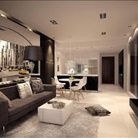 Chính chủ cần bán căn hộ Times City diện tích 53m2 giá 1,85 tỷ