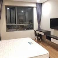 Cần cho thuê căn hộ Him Lam Chợ Lớn, Quận 6, 97m2, 2 phòng ngủ, giá 10 triệu/tháng