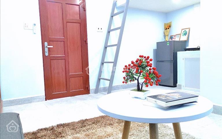 Cho thuê căn hộ mini full nội thất giá rẻ gần Phú Mỹ Hưng, Crescent Mall, trung tâm Quận 7