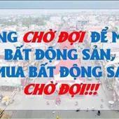 Tú Nguyễn Hữu