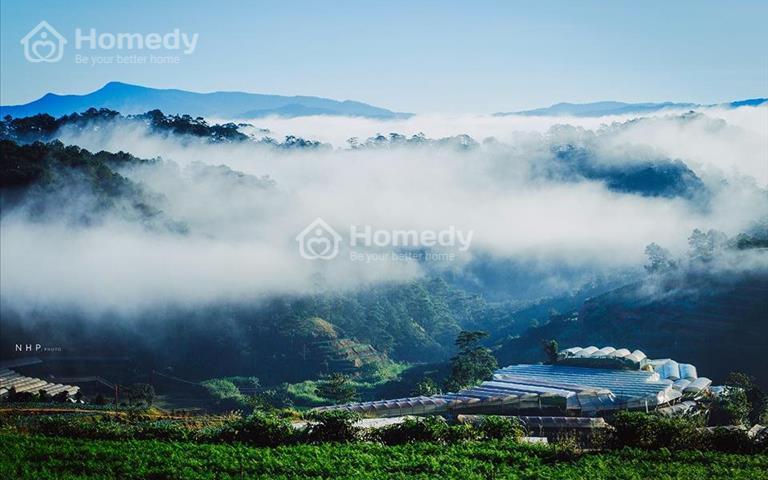 Bán đất ngay khu du lịch Đồi Chè Đà Lạt - 15x34m giá chỉ 2.9 triệu/m2