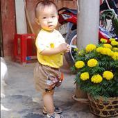 Phạm Minh Chí