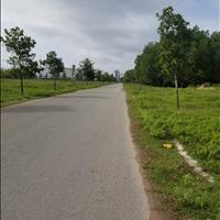 Đất Bàu Bàng sau khu công nghiệp tiện xây xưởng, nhà trọ, giá 500 ngàn/m2